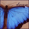 ButterflyDreams's Avatar